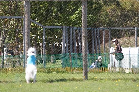 32IMG_1303.jpg
