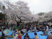 上野公園uen