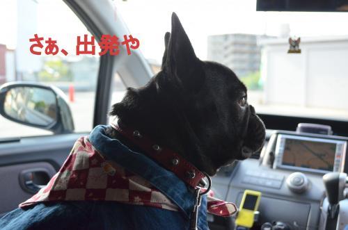 蜃コ逋コ_convert_20130506225355