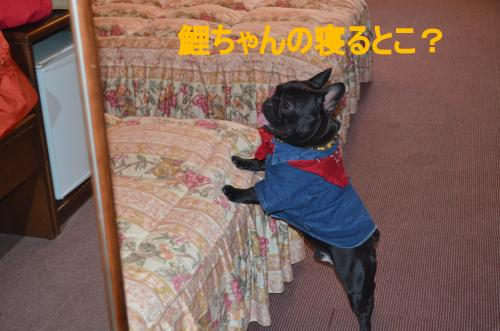 繝帙ユ繝ォ縺ァ魃峨■繧・s_convert_20130506234044