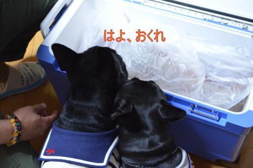 縺ッ繧医¥繧契convert_20130509214012
