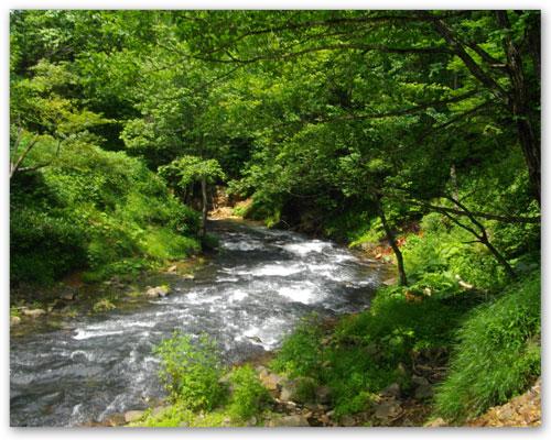 ユーヤンベツ川