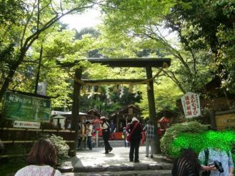 4月24日野宮神社