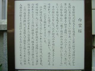2006_0929_080621AA.jpg