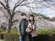 12-7桜2