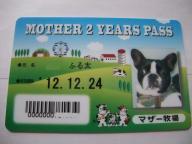 12-24パスポート