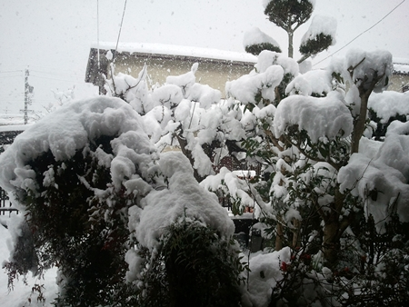 2014-_02_14大雪02