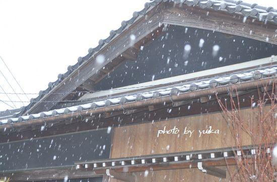 雪208-1