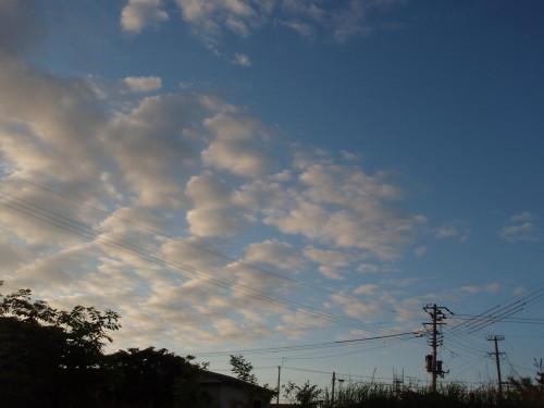 20120624 初夏の空2