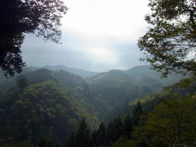 110925の朝の景色