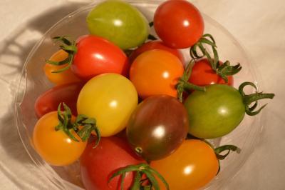 Tomato-2_20130622.jpg