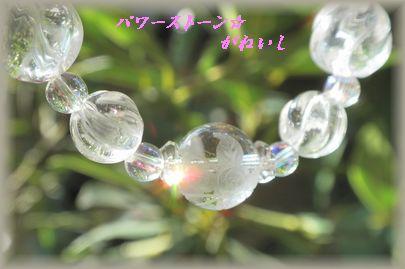 D 薔薇蝶