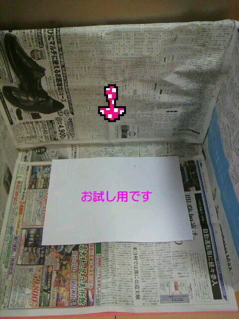 P1000359.jpg