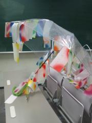 きしょい傘 写真