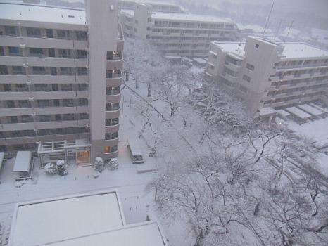 2週続きの雪