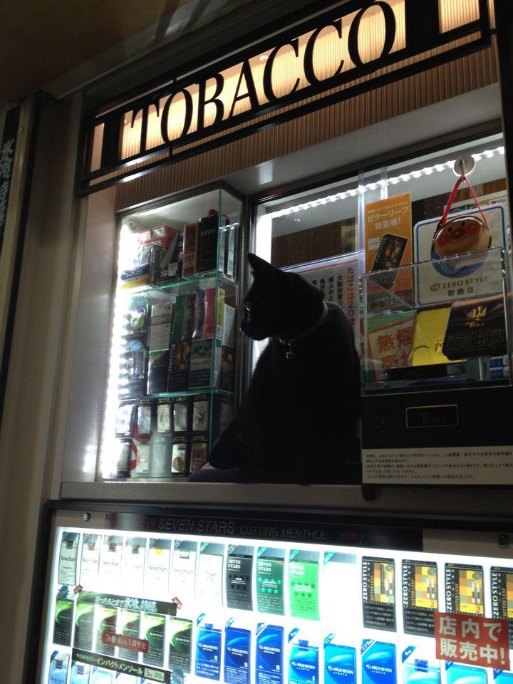 黒猫タバコ店