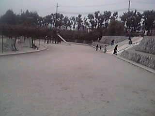 13-03-24_019~001