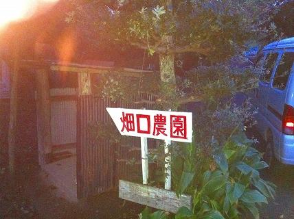 畑口農園1