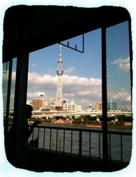 2011.9.30.カワウソからのスカイツリーIMG_3042