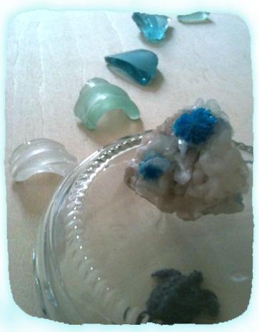 2011.9.30.海亀と青い島upIMG_3046