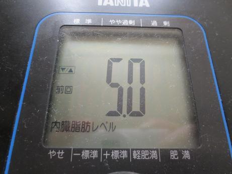 内臓脂肪140224