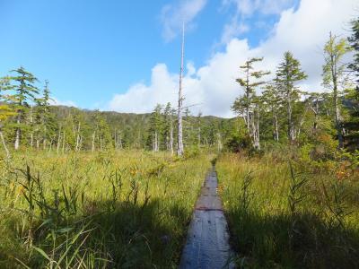デコ平湿原