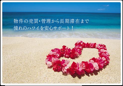 hawai.png