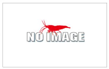 al-no image