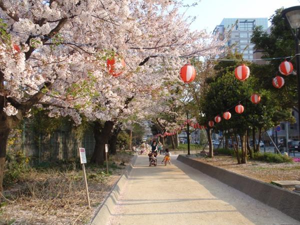 確か錦糸公園