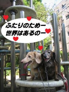 お散歩LOVE
