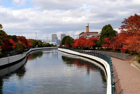 川沿いのお散歩コース