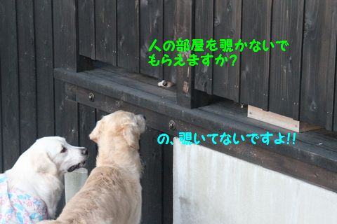 20111003_03_R.jpg