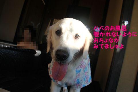 20111003_05_R.jpg