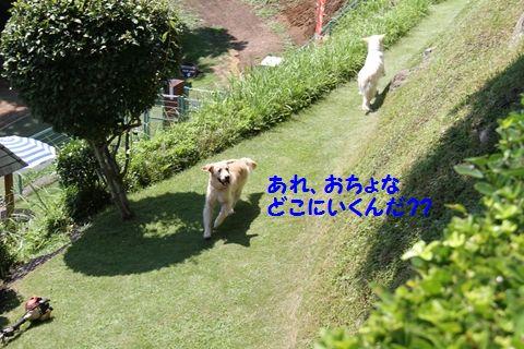 20111003_11_R.jpg