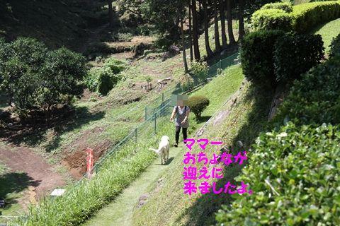 20111003_12_R.jpg