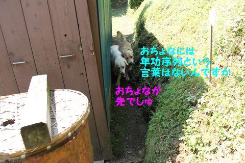 20111003_13_R.jpg