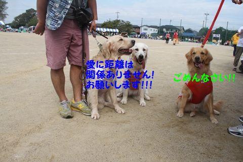20111024_02_R.jpg