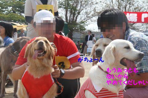 20111024_082_R.jpg