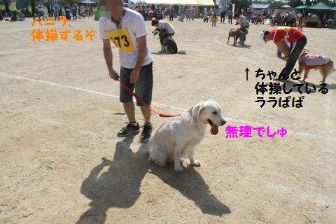20111024_10_R.jpg