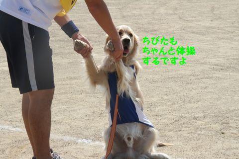 20111024_13_R.jpg