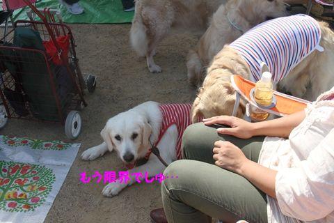 20111024_15_R.jpg