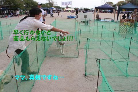 20111105_16.jpg