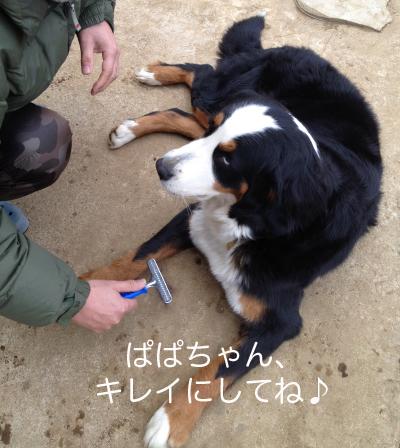 のんびり〜♪