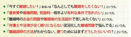 離婚調停成功マニュアル 澁川良幸離婚カウンセラーによる最新ノウハウ1