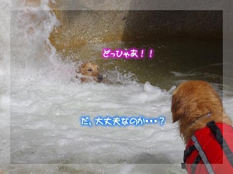 110908_10.jpg
