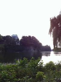 名古屋城!
