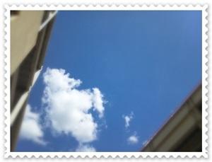 the sum_sky2_2012