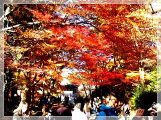 bishamon2_sh70_2012.jpg