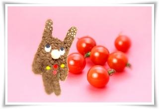 tubtub_strap1_tomato.jpg