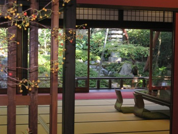 大安苑一階広間と庭